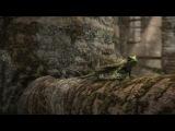BBC Планета динозавров 7 Совершенные убийцы