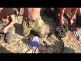 Новороссия Пленные ВСУ скачут Украина